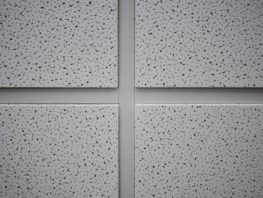 Acoustical Ceiling Tile Replacement Acoustical Ceiling Tile Coating and Tile Replacement