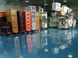 Seamless Epoxy Floor Painting Alpine Painting Launches Specialty Flooring Division